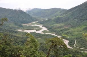 La alteración humana del paisaje amazónico se remonta a 10.000 años