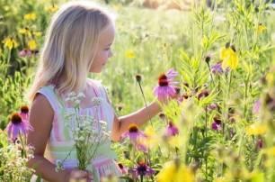 Medio ambiente, el 'profesorado' tiene la clave para despertar la conciencia ambiental entre los más pequeños