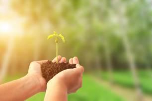 La Transición Ecológica debe estar 'liderada' por organismos democráticos