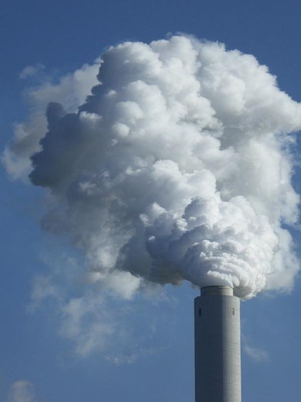 La neutralidad de carbono para mediados del siglo XXI, y estas son las 'trampas' de las Corporaciones
