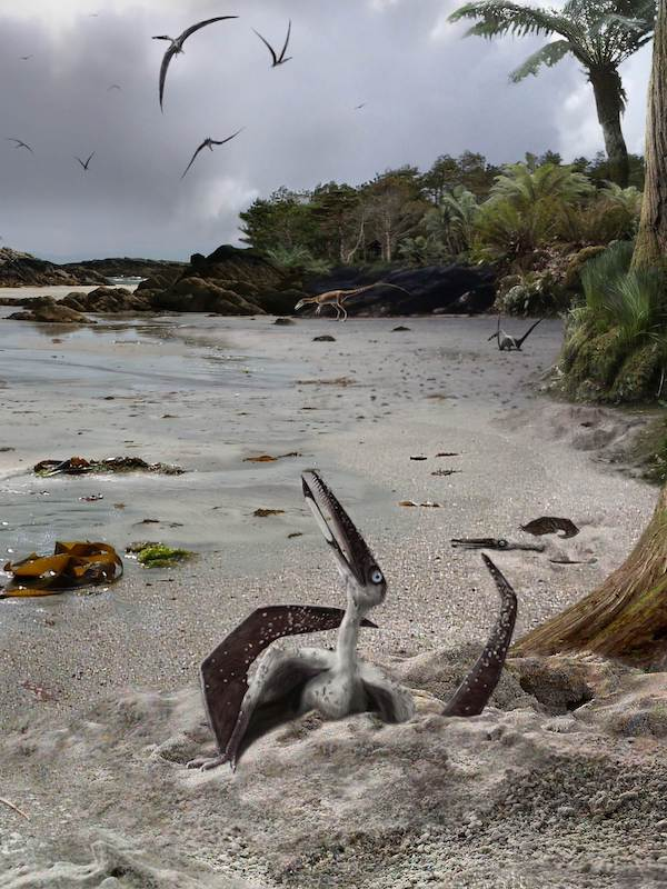 Revelan el origen de los primeros vertebrados voladores