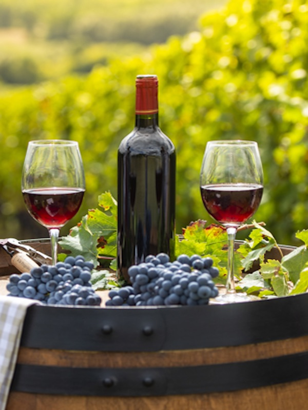 Alimentos ecológicos. 1er Concurso de Vinos Ecológicos de la Comunitat Valenciana
