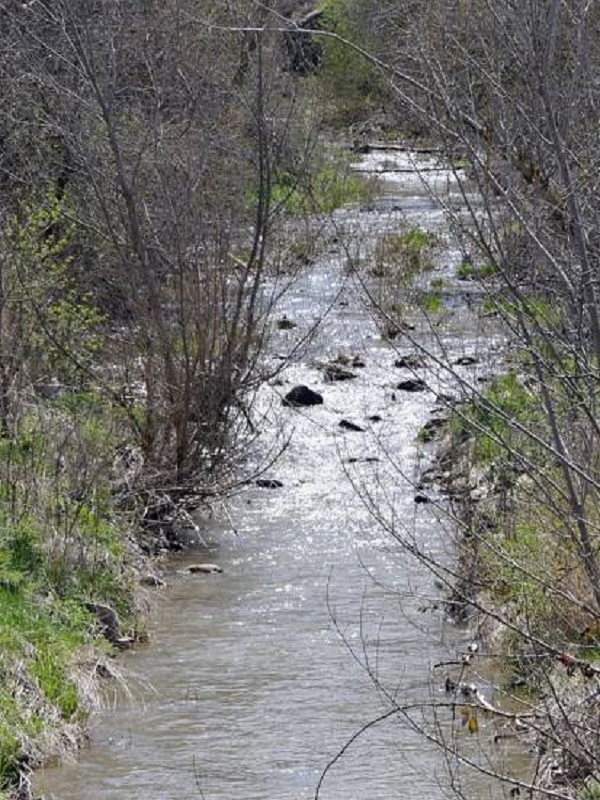 Medio ambiente, los ríos europeos 'atiborrados' de barreras artificiales
