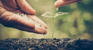 Mitigación del calentamiento global o proyectos para reducir el carbono, iniciativas más realizadas por las grandes empresas