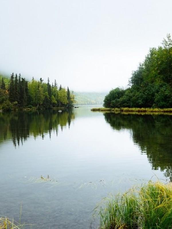 Tecnología verde para el estudio de ecosistemas de agua dulce