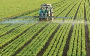 Tecnología verde, el CSIC utilizará el láser para eliminar malas hierbas de los cultivos sin necesidad de pesticidas