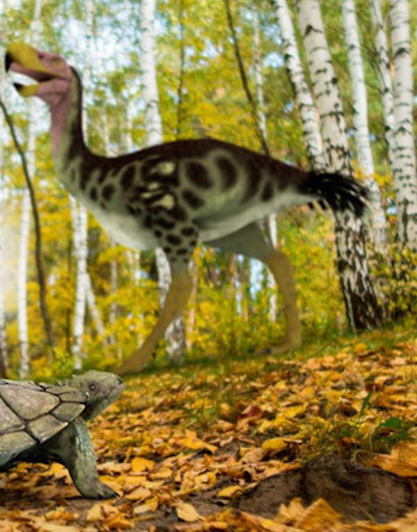 Así interactuaron las especies americanas hace tres millones de años