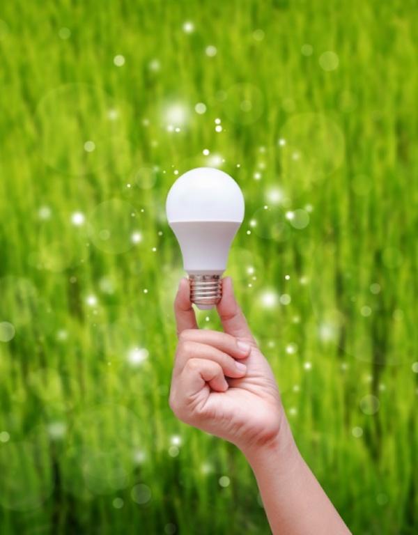 Tecnología verde para los LED del futuro