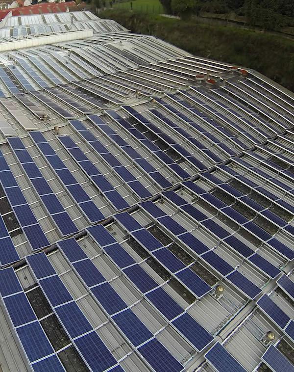 La eléctrica verde 'ecovatios' compensa los excedentes a sus clientes de autoconsumo
