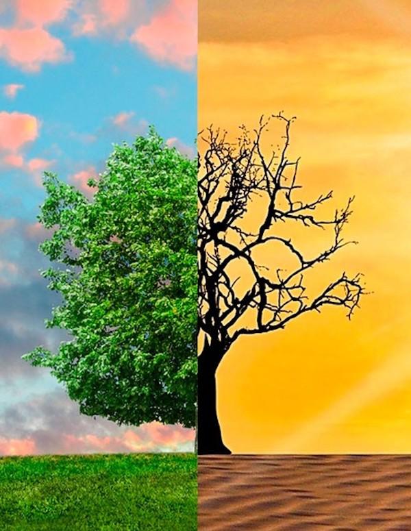 Navarra en busca de la ley foral de cambio climático y transición energética