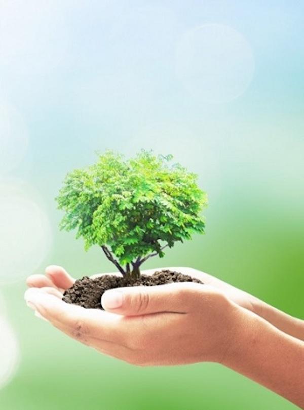 El periodismo ambiental es 'vital', aunque poco reconocido