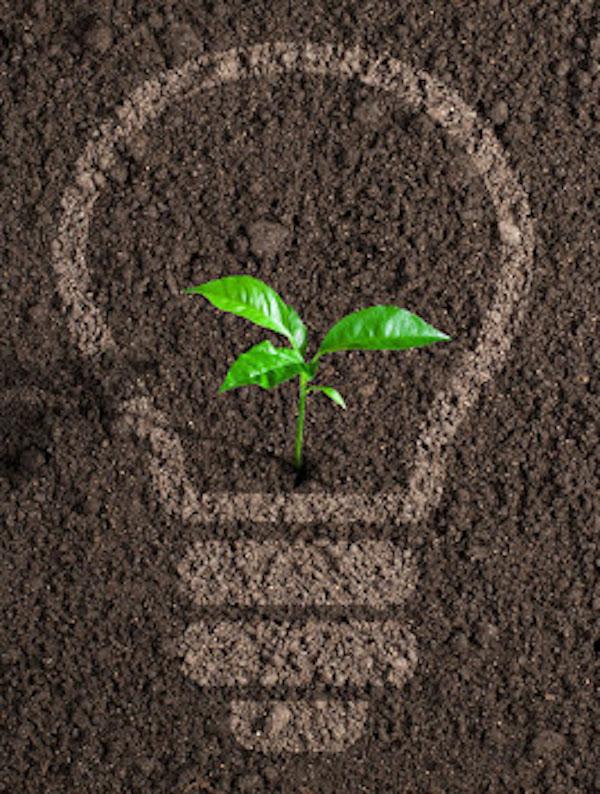 Merchandising ecológico para empresas: una tendencia que no para de crecer