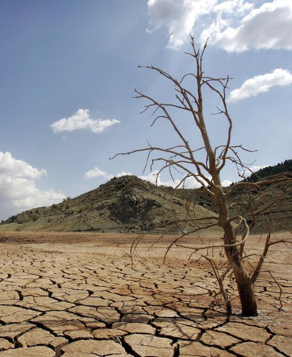 La gran 'decepción' de La ley de cambio climático prevista por el Gobierno de España