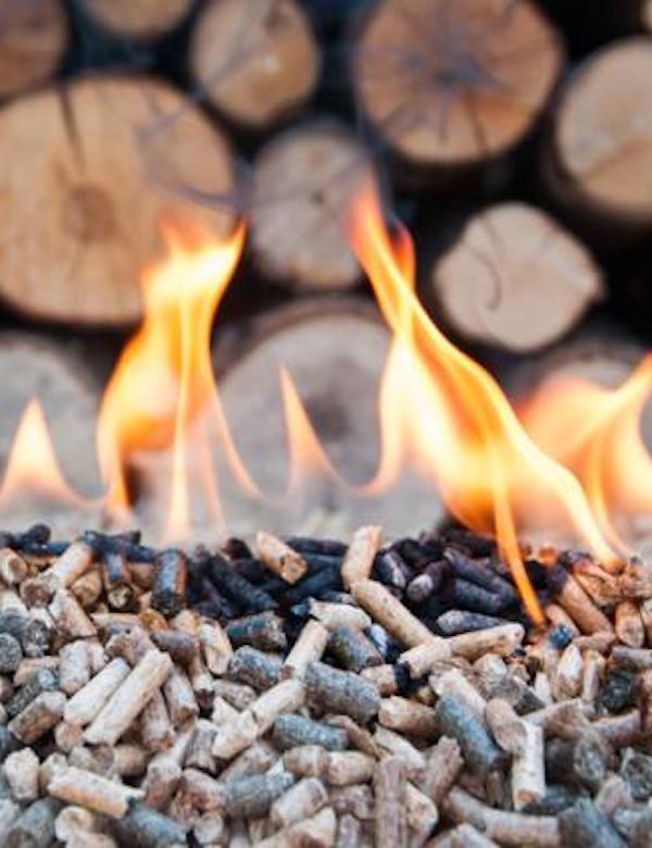 Granada lidera el uso de calderas de biomasa para producir calor