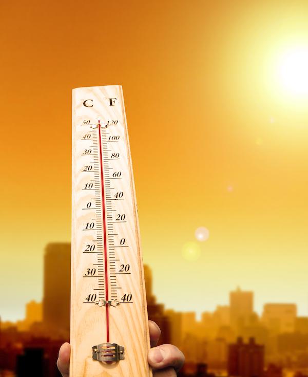 El efecto isla de calor adelanta seis días la primavera en ciudades estadounidenses