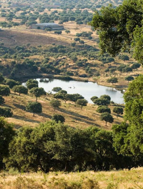 España renueva el convenio con la UNESCO para mantener el Centro Internacional de Reservas de la Biosfera