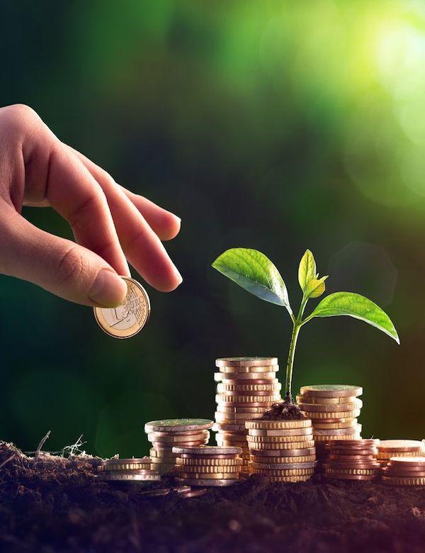 Lluvia de millones para entidades con proyectos que impulsen la economía verde