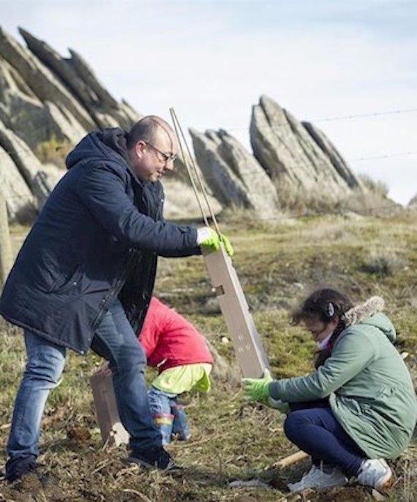 Fundación Montemadrid completa la primera fase de 'ReforestaAcción' con 1.350 árboles plantados en la Sierra Norte