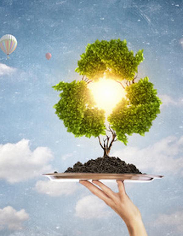Roche se apunta a la economía circular