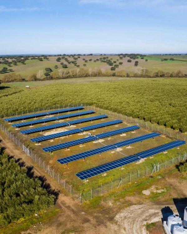 Riego fotovoltaico para una agricultura más sostenible