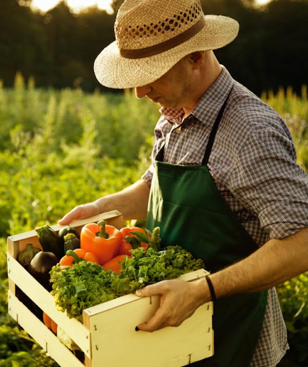 Crean en Cantabria un proyecto en favor de la agricultura ecológica