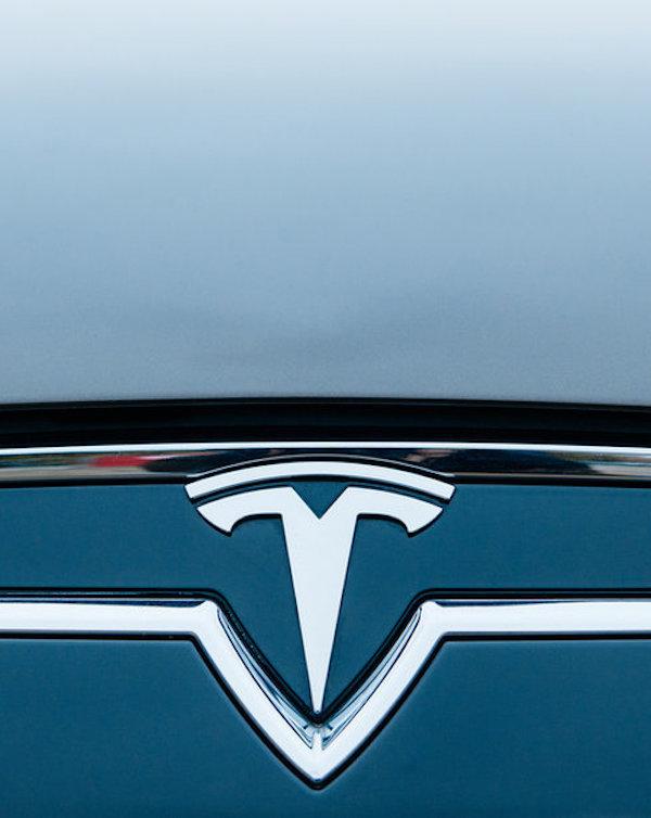 Tesla quería 'descuartizar' un bosque para instalar su factoría en Berlín