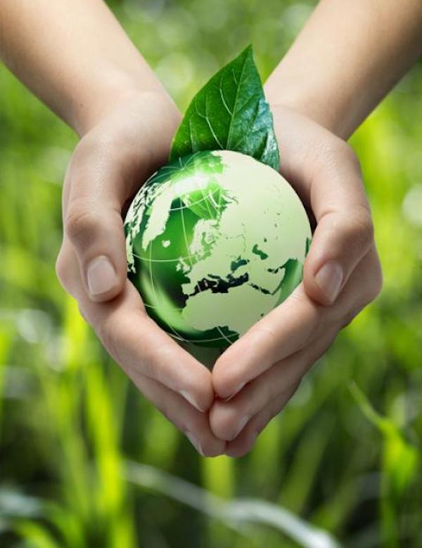 España quiere mejorar la protección de la biodiversidad, costas y agua