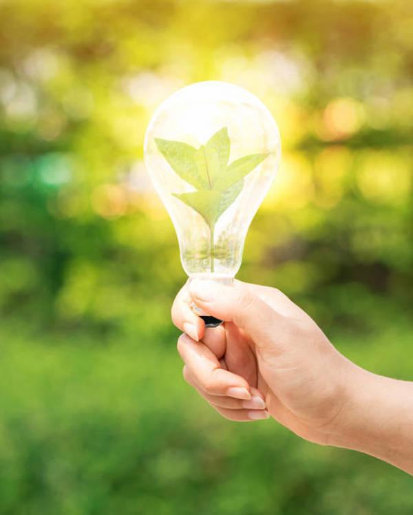 Cursos de FEMXA para ser un profesional de la 'eficiencia energética'