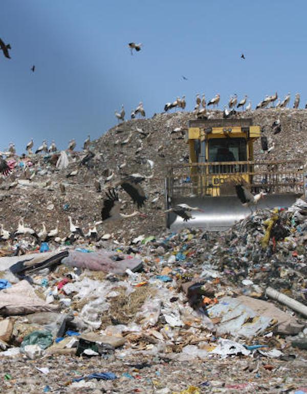 Europa mantendrá el seguimiento de los antiguos vertederos de Real (Valencia) antes de autorizar su restauración ambiental