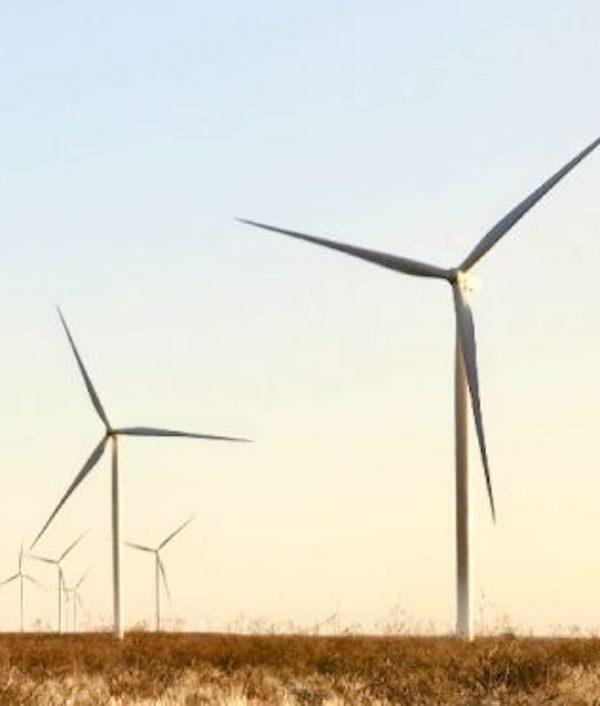 Siemens Gamesa construirá el primer parque eólico de Yibuti