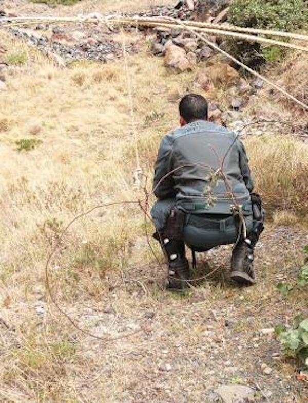 La Gomera, buscando a los delincuentes que colocaron lazos ilegales para la caza de animales