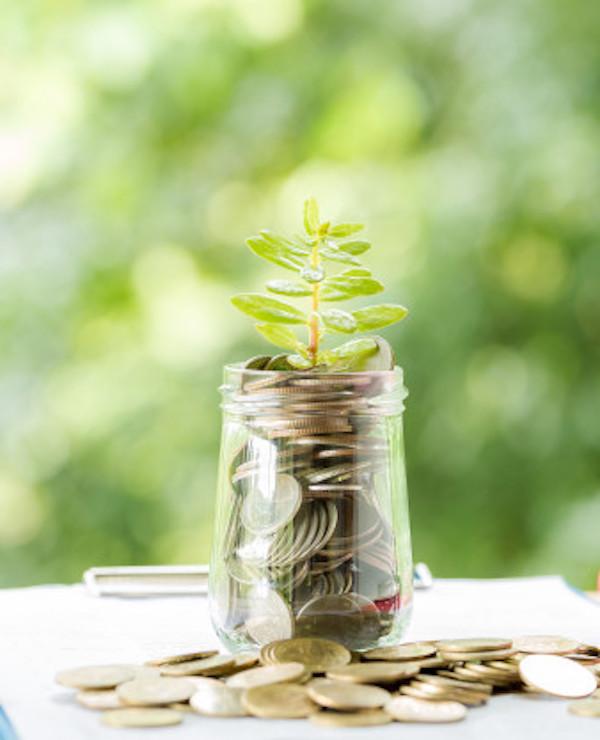 Navarra apuesta por reforzar la emisión de bonos verdes y sociales para avanzar en sostenibilidad
