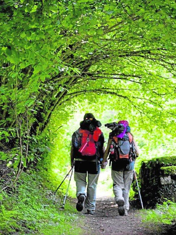 Navarra aboga por el respeto al medio ambiente en las vacaciones
