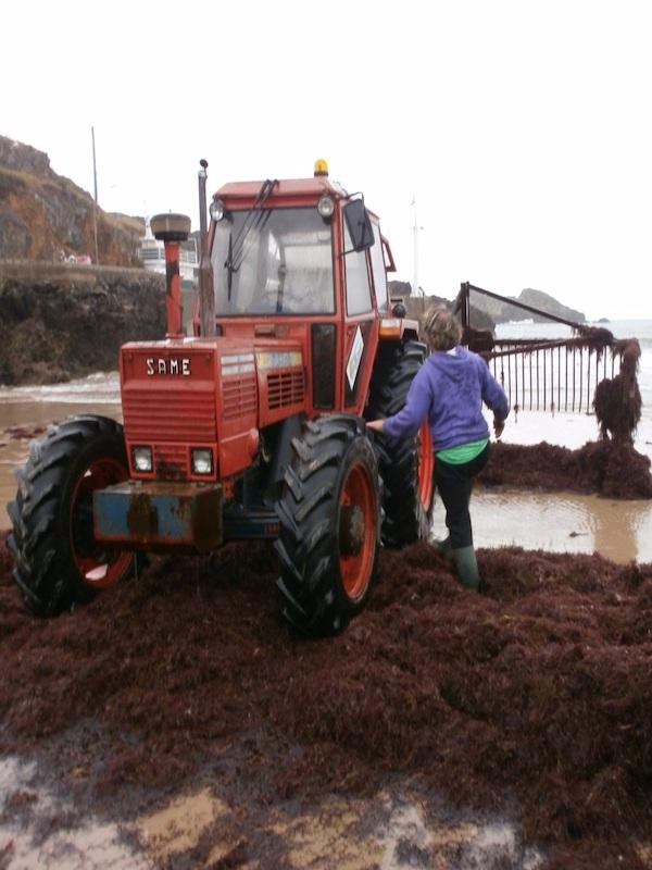 Solicitamos al Gobierno de Asturias que paralice el arranque del ocle