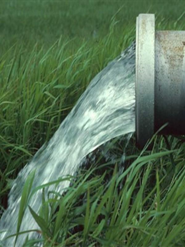 La Mesa Social del Agua andaluza exige una transición hídrica justa