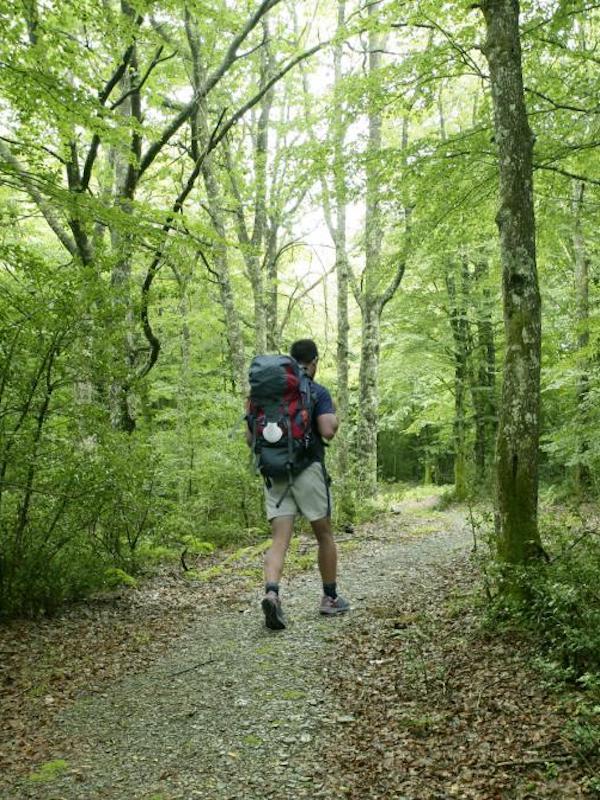 La Red Explora presenta diversas actividades de turismo sostenible en Navarra