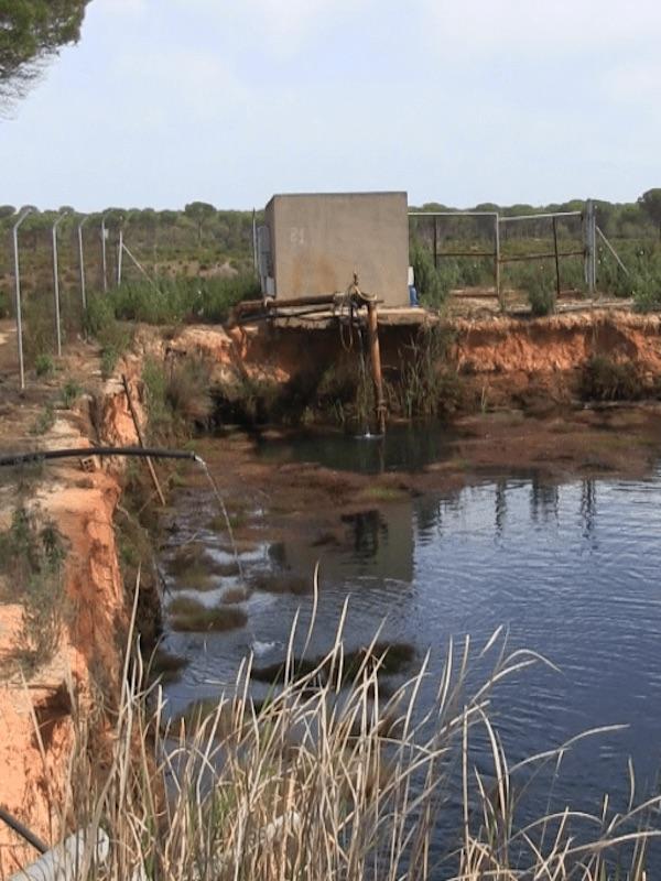 Juicio por extracciones ilegales del acuífero de Doñana