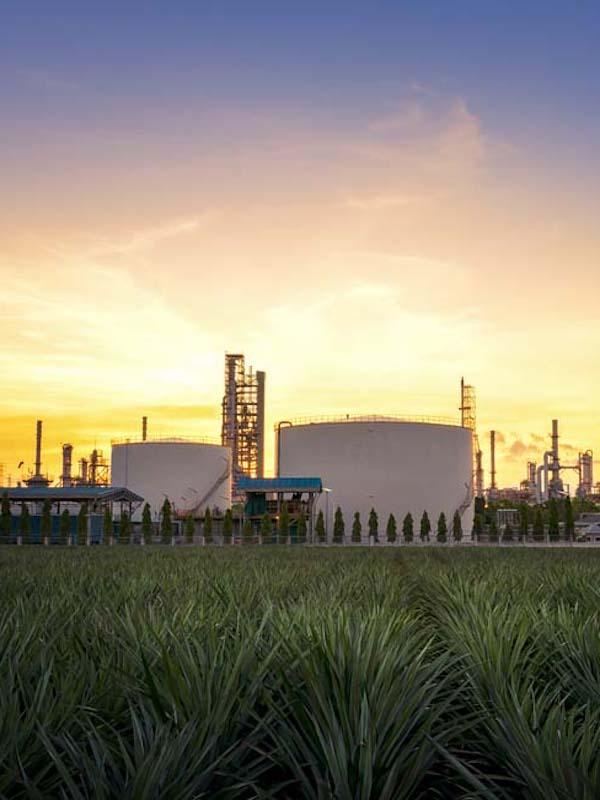 Enagás y BP, alianza para promover los gases renovables