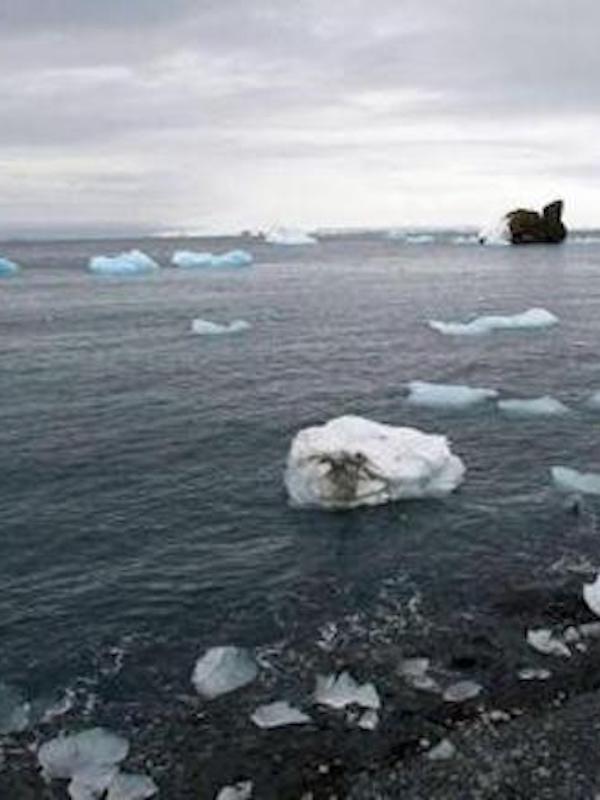 Científicos españoles predicen la emisión de isopreno en el océano Antártico, gas capaz de afectar al clima