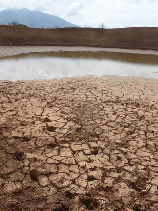 Madrid creará un plan contra el cambio climático