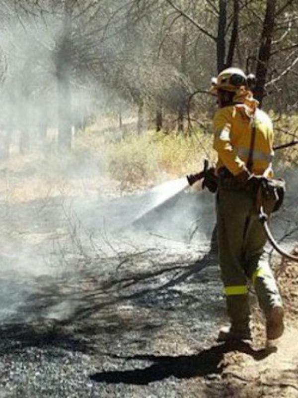 16.000 hectáreas fulminadas por el fuego hasta la fecha