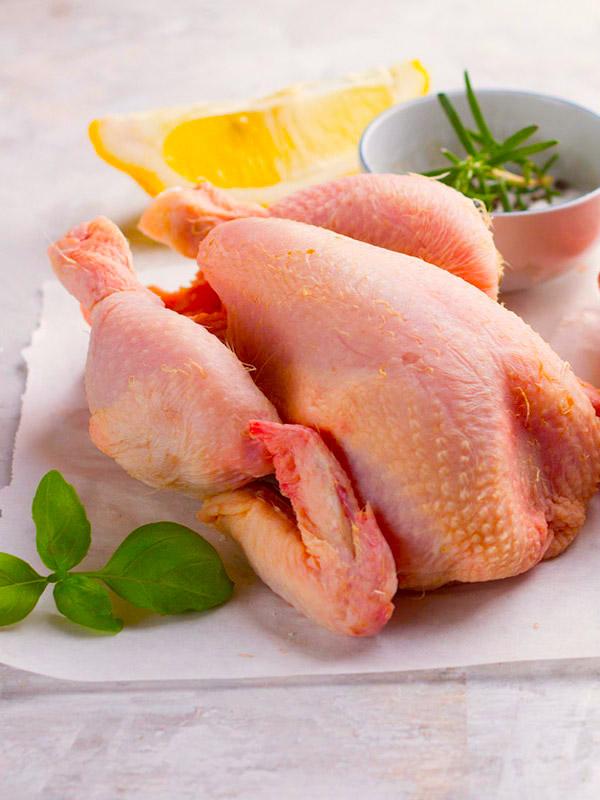 Carnes Campos. Pollos con Certificado de Calidad Ecológica