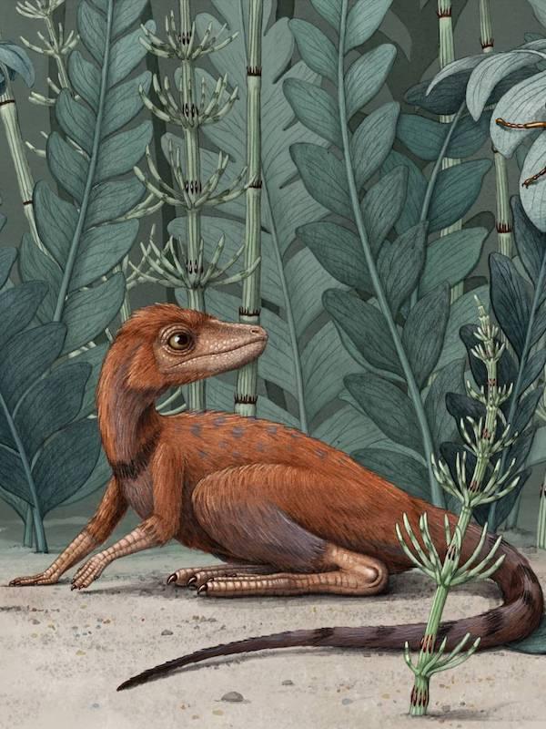 El 'pequeño' gran dinosaurio