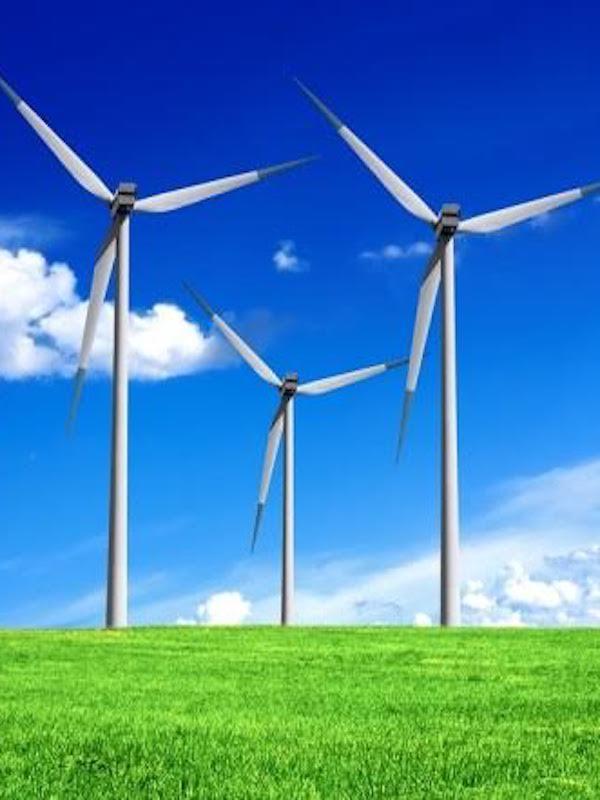 Tramitación 'vía urgencia' de dos reales decretos para el despliegue de las energías renovables en España