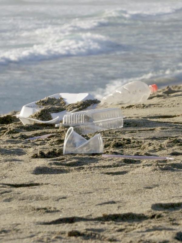 Chile. Oceana celebra aprobación unánime en el Senado de ley que regula plásticos de un solo uso y botellas desechables