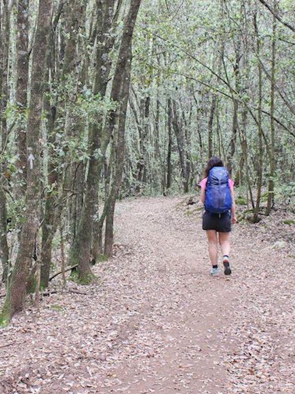 Por una 'Ruta Jacobea' respetuosa con el medio ambiente