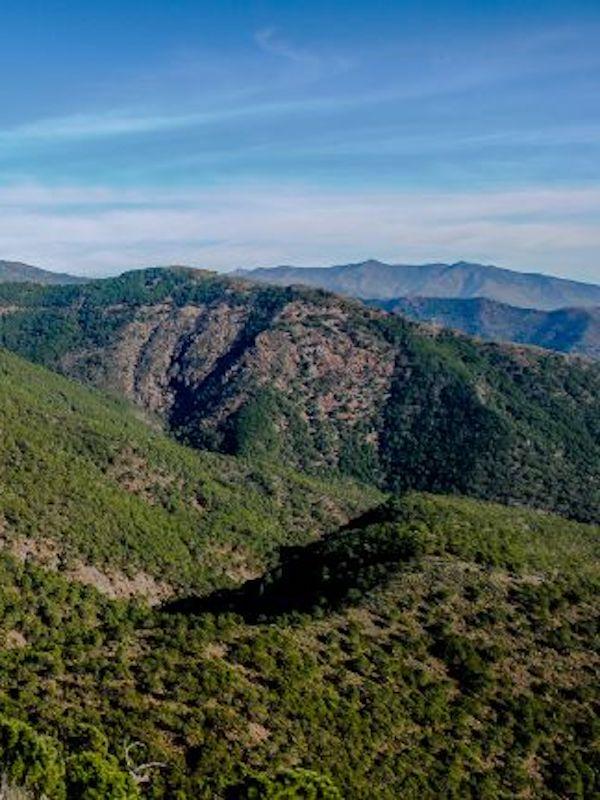 Obras de mejora del acceso a Los Reales en Sierra Bermeja