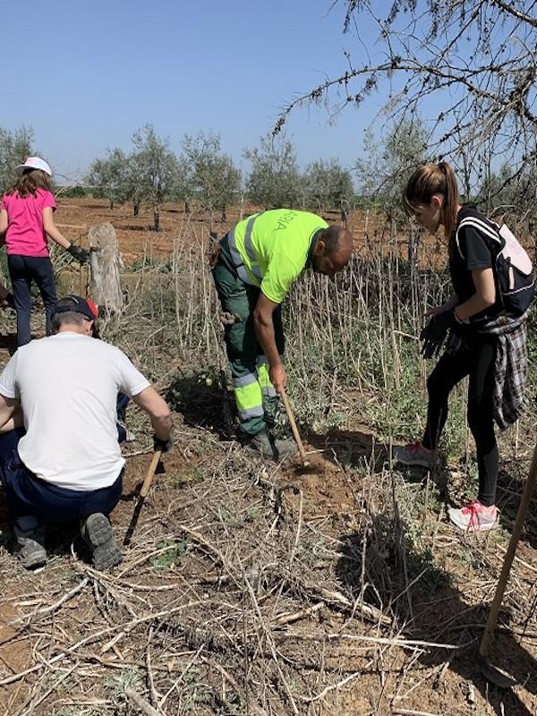 El proyecto 'Málaga Viva', galardonado por su lucha contra el cambio climático