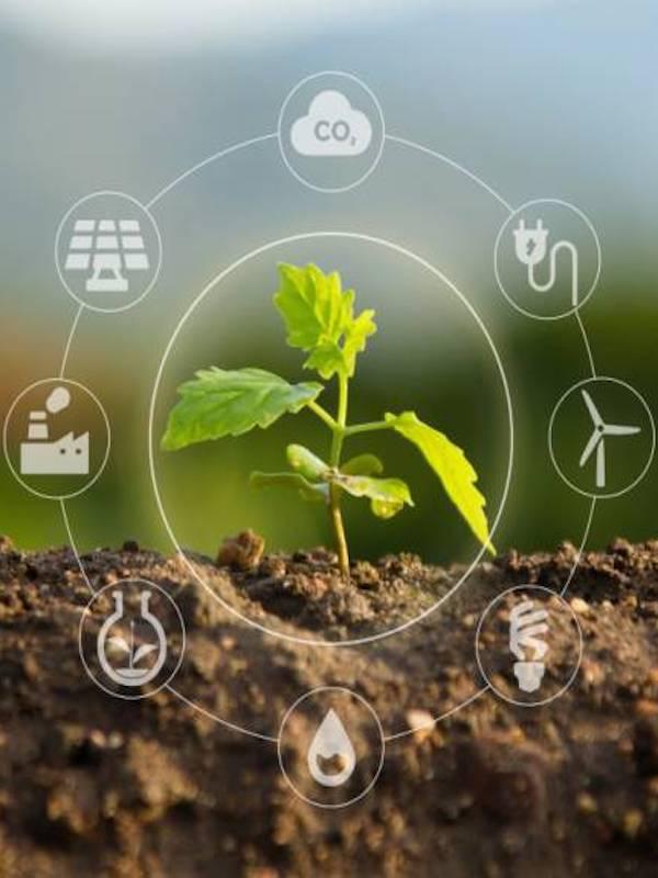 Andalucía confía en la 'economía 'verde'