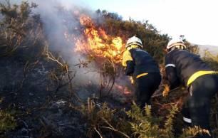 AEMET presenta sus nuevos desarrollos y mejoras para la campaña de verano de incendios forestales